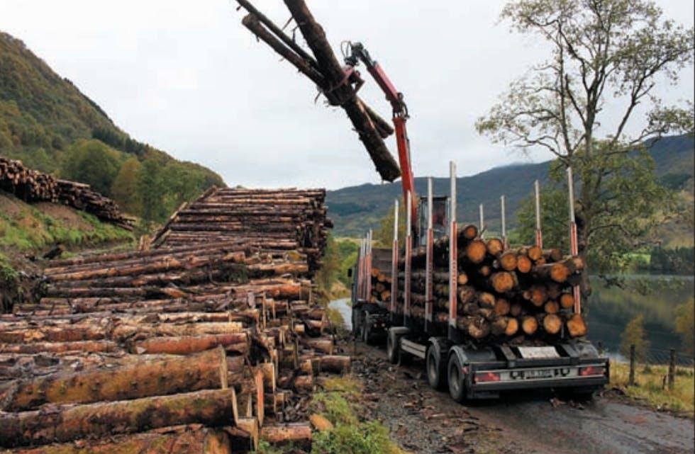 Dispensasjonen Nortømmer AS fekk for nokre år sidan,  til å køyra ut tømmer på den kommunale Kvammenvegen i Etne gjaldt opptil 8 tonn aksellast, ikkje 10 tonn slik selskapet ønskte. Det fordyra transporten for Nordtømmer.