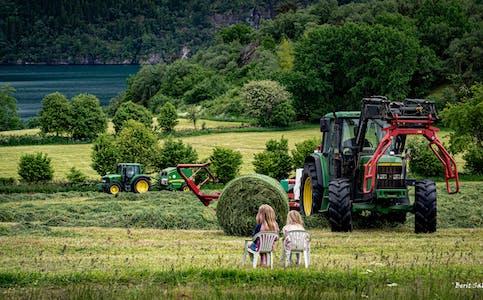 Dette biletet gjekk til topps i veke 28. På biletet ser du Nora og Liva Jacobsen, som  er interesserte tilskodarar til førsteslåtten på Børkjenes.  Foto: Berit Saltnes